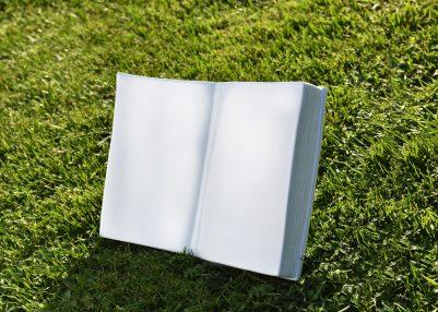 Libro Bassano Ambientata