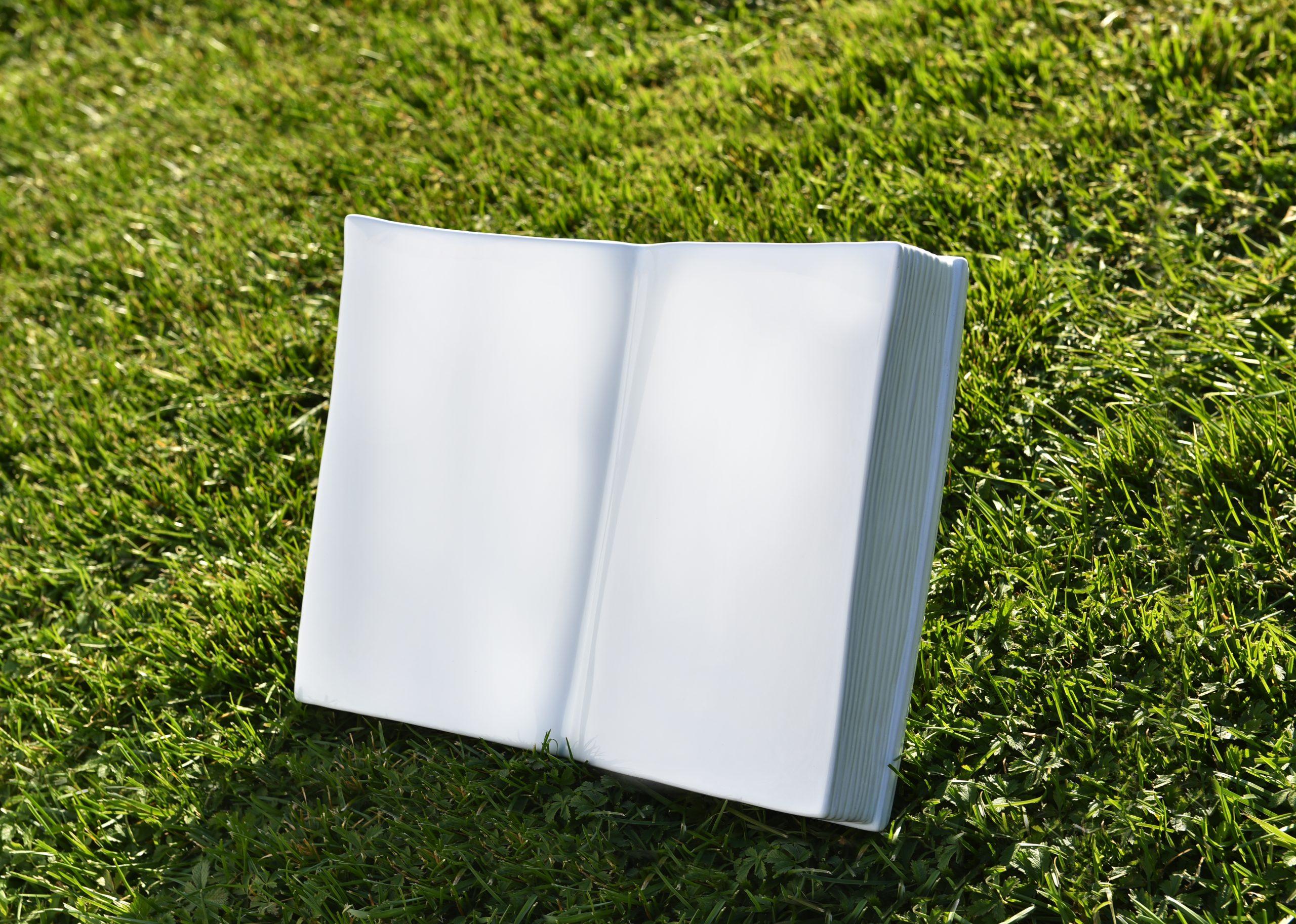 Bassano Ambientata book