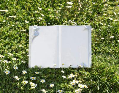 Calla-Ambientata book