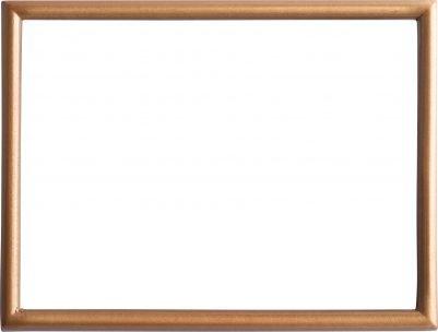 Rectangular Bronze Frame