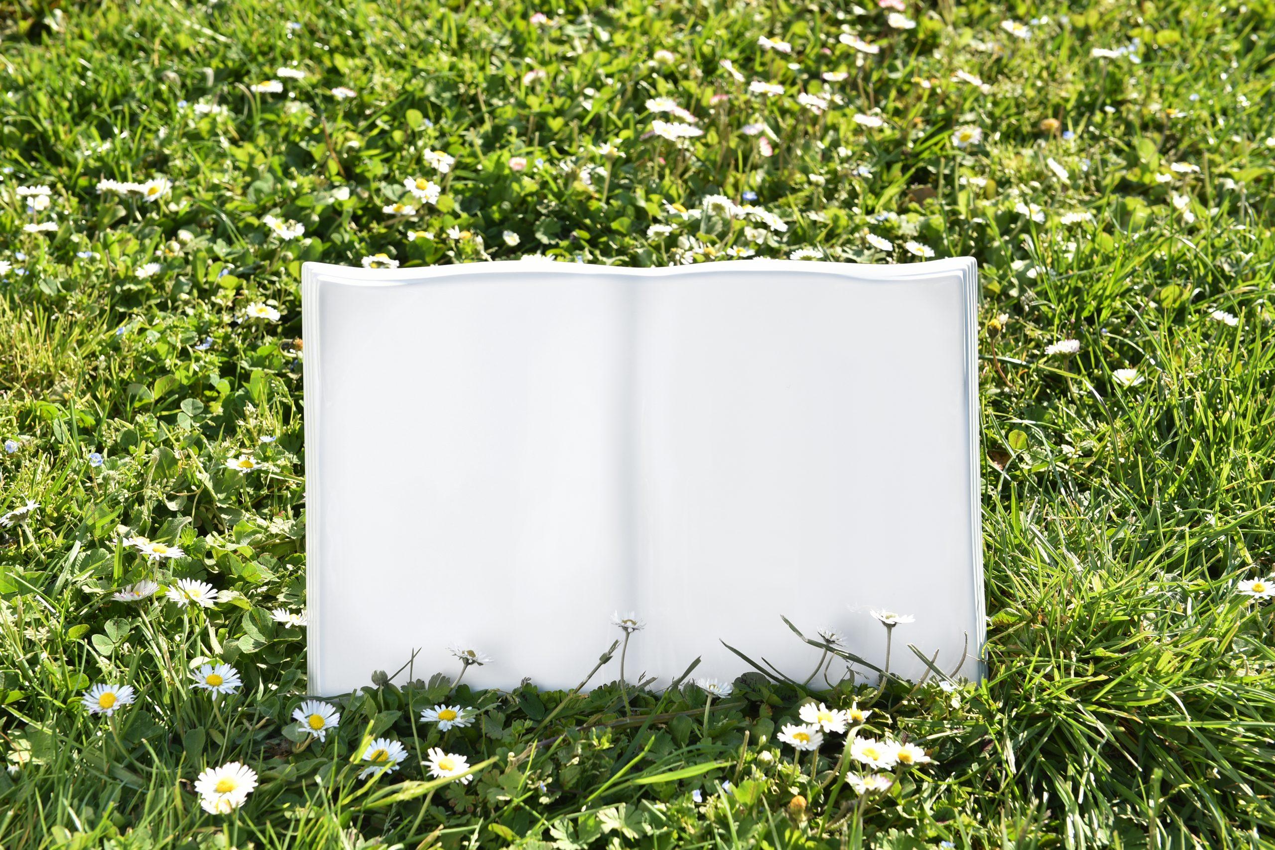 Wavy-Ambient book