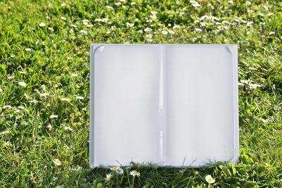 Riccioli-Ambientata book