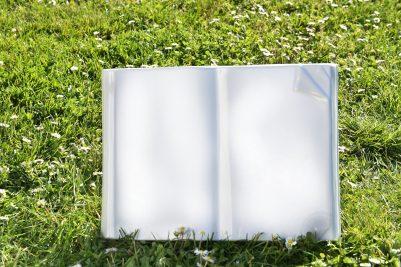 Sanremo-Ambientata book